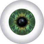 Doll Eyes 10KN