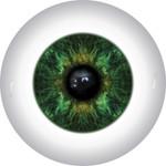 Doll Eyes 11KN