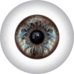Doll Eyes 12KN