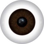 Doll Eyes 166KR