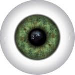 Doll Eyes 16KN