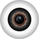 Doll Eyes 245KR
