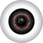 Doll Eyes 246KR
