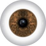 Doll Eyes 25KN