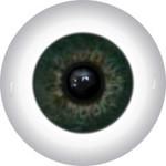 Doll Eyes 297KR