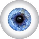 Doll Eyes 29KN