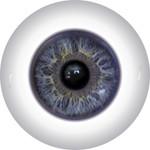 Doll Eyes 40KN