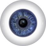 Doll Eyes 41KN