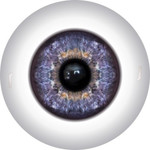 Doll Eyes 42KN