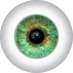 Doll Eyes 46KN