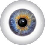 Doll Eyes 47KN