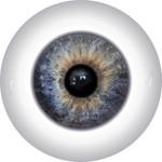 Doll Eyes 48KN