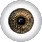 Doll Eyes 52KN