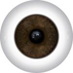 Doll Eyes 55KN
