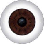 Doll Eyes 57KN
