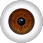 Doll Eyes 58KN