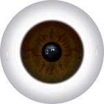 Doll Eyes 59KN