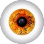 Doll Eyes 43K