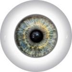Doll Eyes 51K