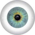 Doll Eyes 52K