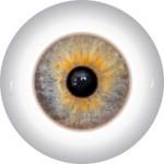 Doll Eyes 60K