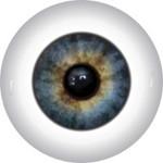 Doll Eyes 81K