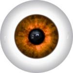 Doll Eyes 86K