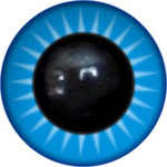 Amigurumi/Teddy Eyes 106А