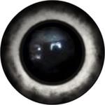 Amigurumi/Teddy Eyes 184А