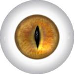 Slit Pupil Doll Eyes 3KK