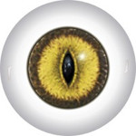 Slit Pupil Doll Eyes 48KK