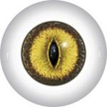 Slit Pupil Doll Eyes 48KK