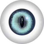 Slit Pupil Doll Eyes 59KK