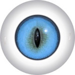 Slit Pupil Doll Eyes 66KK
