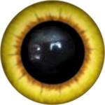 Amigurumi/Teddy Eyes 86А