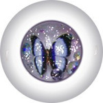 Glitter Doll Eyes 8KCC