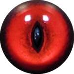 Cat Eyes KK45