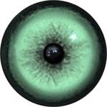 Cat Eyes KK74
