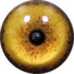 Cat Eyes KK89
