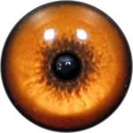 Cat Eyes KK93