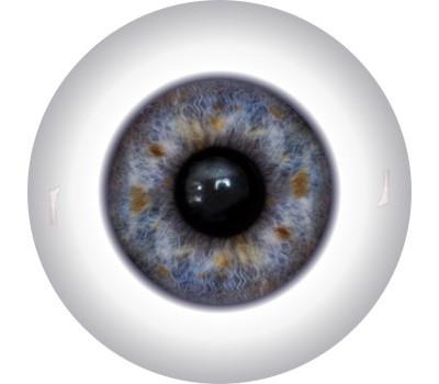 Doll Eyes 14KN