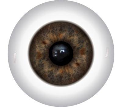 Doll Eyes 19KN