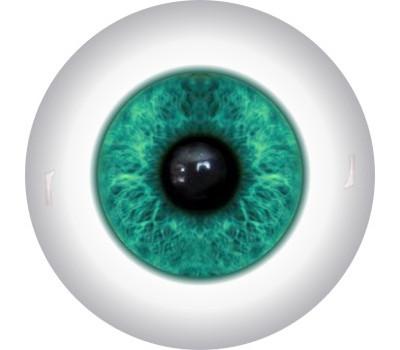Doll Eyes 24KN