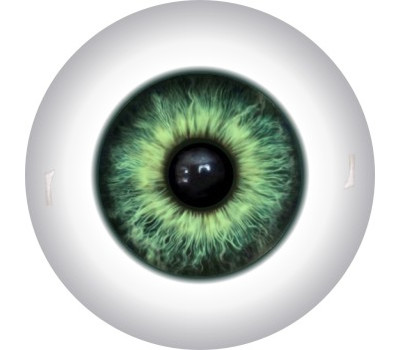 Doll Eyes 4KN