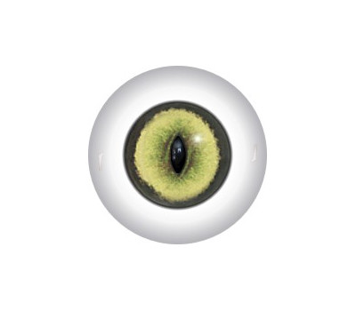 Slit Pupil Doll Eyes 21KK