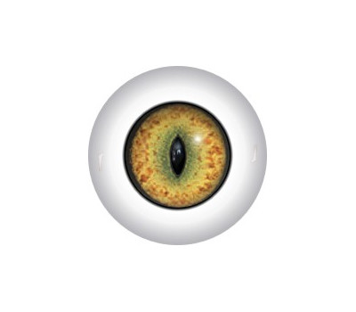 Slit Pupil Doll Eyes 29KK