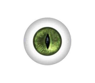 Slit Pupil Doll Eyes 56KK