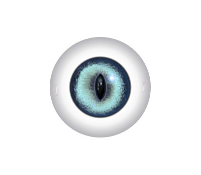 Slit Pupil Doll Eyes 59KK