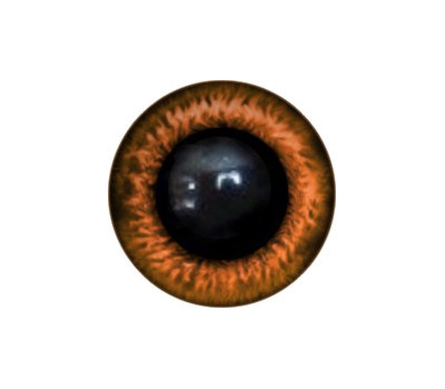 Amigurumi/Teddy Eyes 95A