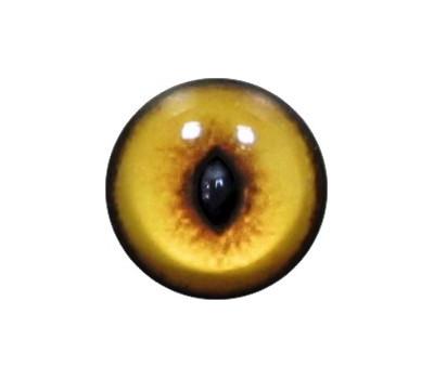 Cat Eyes KK22